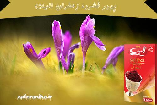 مرکز عرضه عصاره زعفران الیت پودری