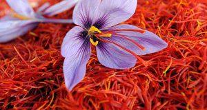 خرید رنگ زعفران