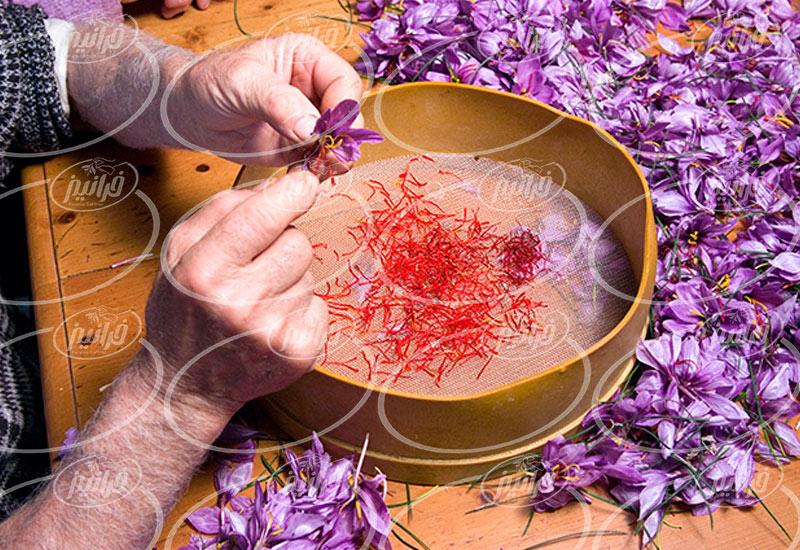 بزرگترین عرضه کننده قطره افشره زعفران در عراق
