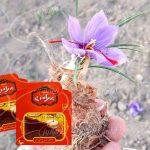 قیمت زعفران ۲ گرمی بهرامن درب کارخانه