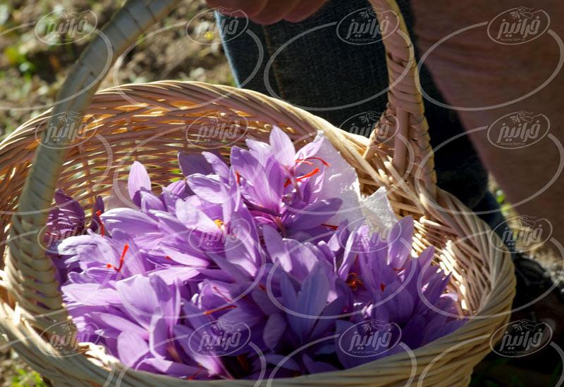 مناسب ترین قیمت رنگ زعفران مایع نیم لیتری
